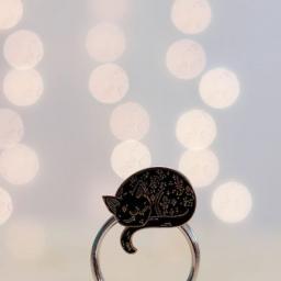 Broche chat sorcier